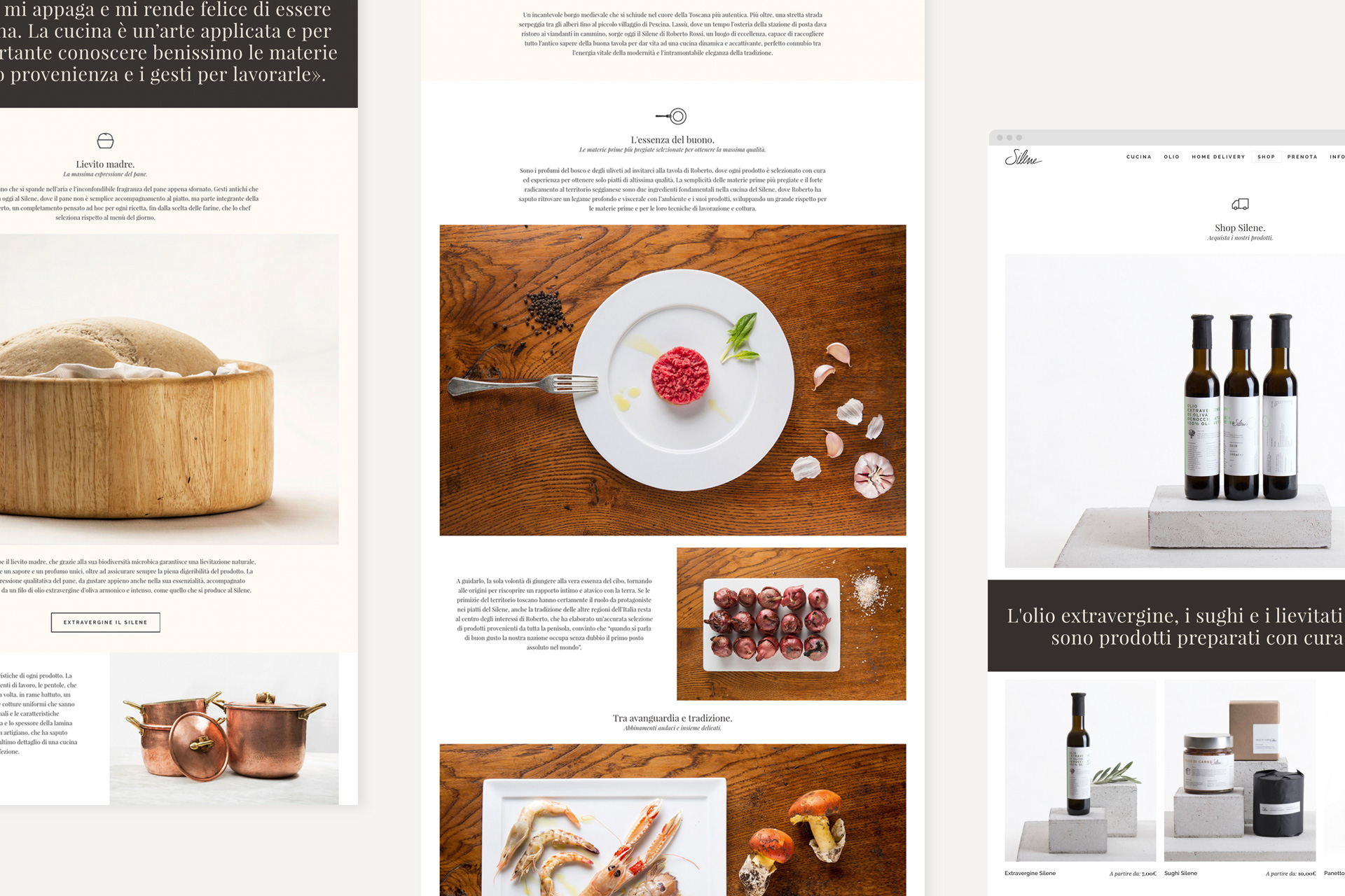 sito silene home overview+shop_web ok
